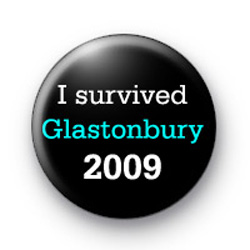 Glastonbury 2009 badge