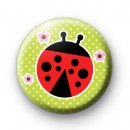 Red and Black Ladybird Badge